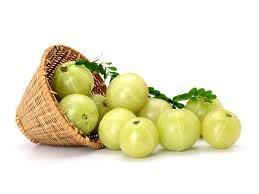Indian Goose Berry