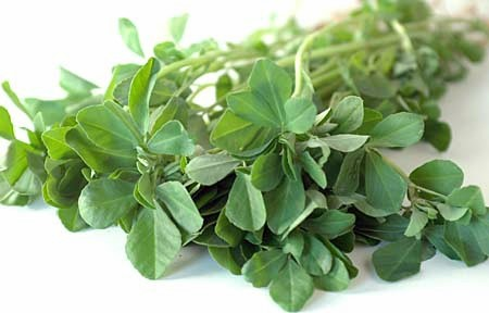 Fenugreek (Methi) Health Benefits
