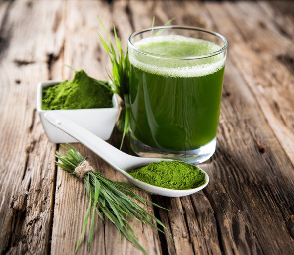 Top Wheat Grass Health Benefits