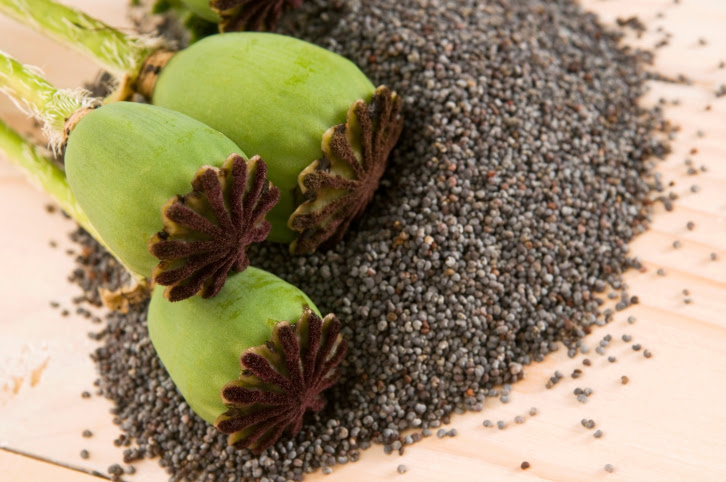 Poppy seeds health benefits