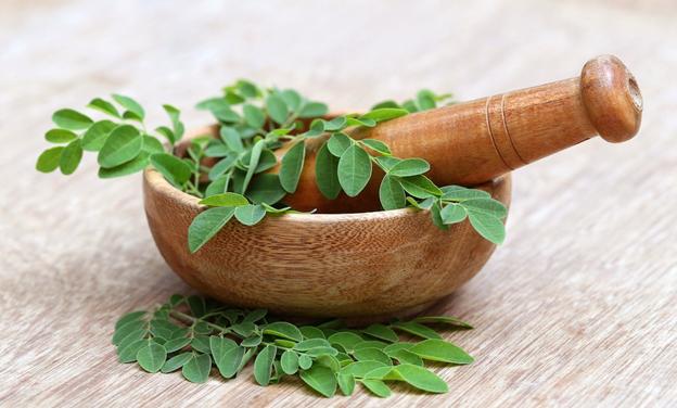 Health Benefits of Moringa Powder