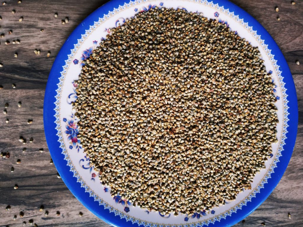 Nutritional Facts of Bajra