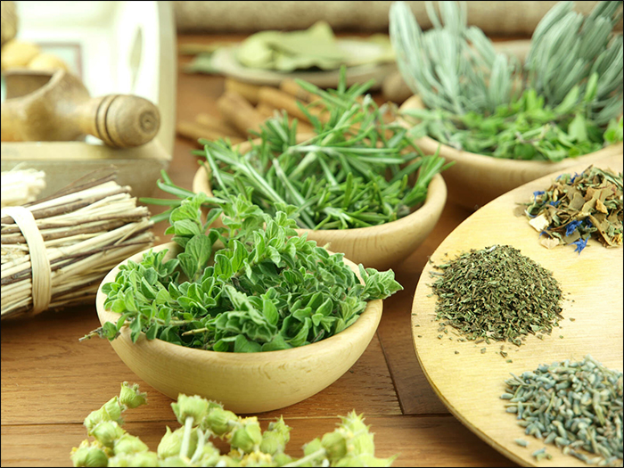 Herbs that are Useful in Improving Sexual Health